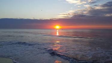 jenny sunrise