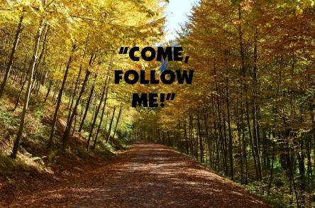 follow 3 finalo
