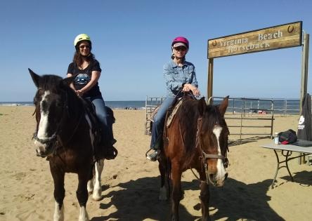VA Beach horse